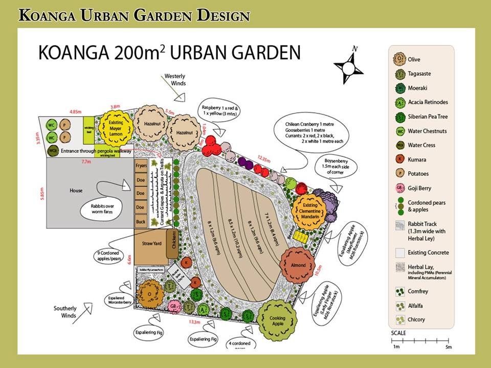 Image Result For Permaculture Garden