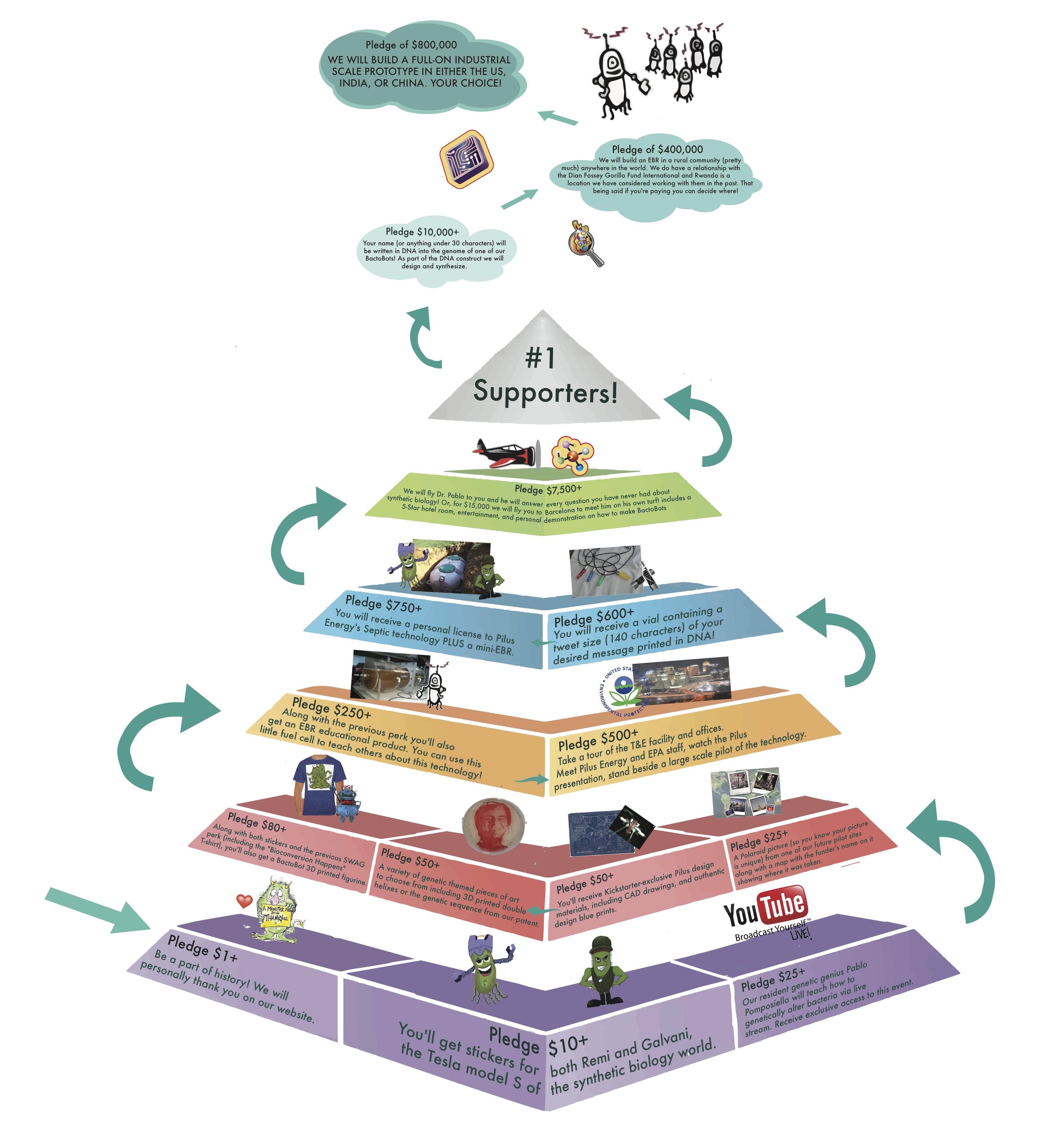 Dna Model School Project Ideas 3d Dna Model Project Ideas