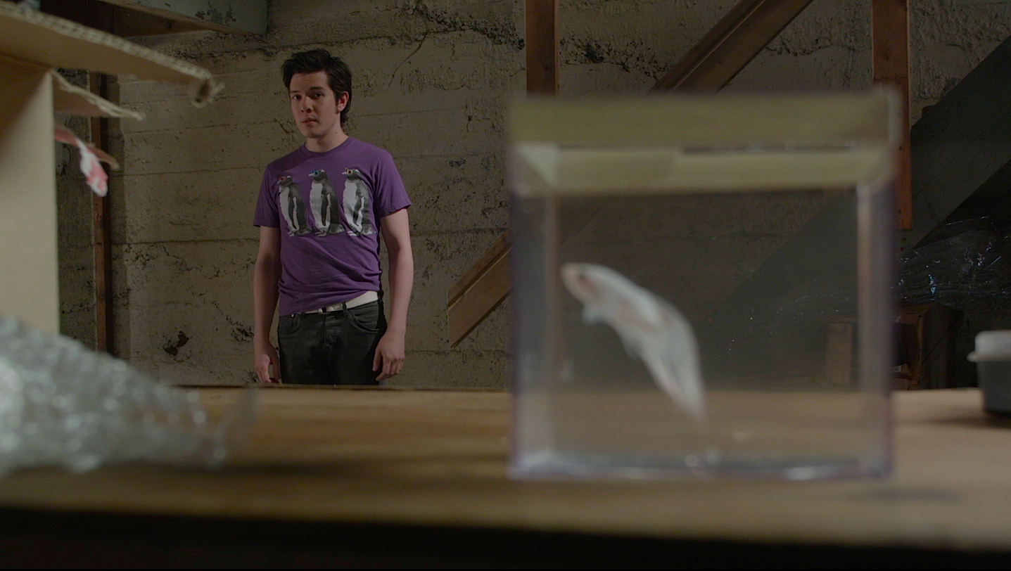 The fish a short film indiegogo for Go fish film