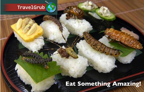 Travelgrub the worlds best food according to you indiegogo dishes are anywhere in the world if youre like me a visual of the food helps me in my decisions and many of the reviews are sure to include one forumfinder Image collections