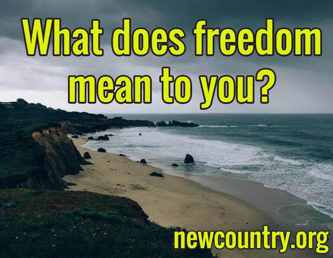 what does freedom mean to you essay Freedom of speech essays the right to free speech is one of the most precious rights an individual has as a citizen of the united states of america this right gives people the opportunity to speak their mind and give their opinions of what they think should happen.
