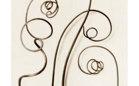 20130801215313-karl-blossfeldt-bryonia-alba-white-bryony
