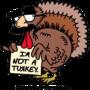 20130329150242-i_m_not_a_turkey_logo_transparent