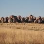 20130212063553-city-of-rocks-sp-2