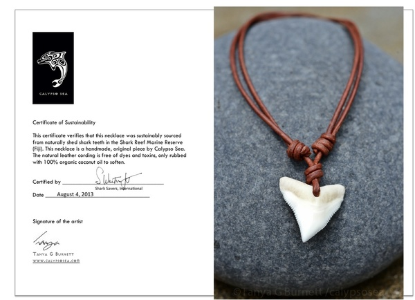 Calypso Sea's Sustainable Shark Tooth Necklace and Certificate of Sustainability