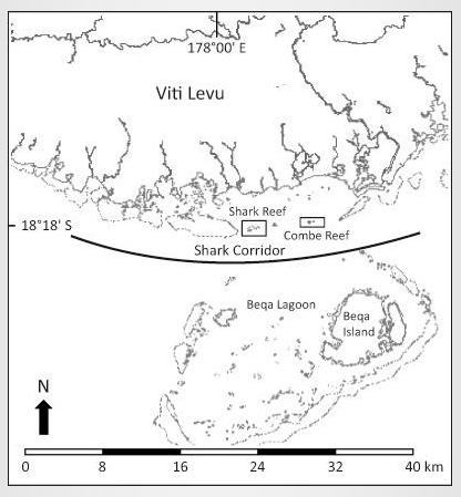 Shark Corridor Map