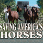 20121015004734-saving-americas-horses-the-movie-220-x194