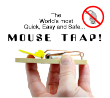 20130228160147-mouse_trap_-_cover_picture_small