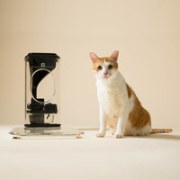 Bistro: A Smart Feeder Recognizes Your Cat's Face